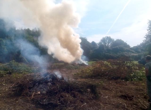 Incendi boschivi, divieto assoluto di abbruciamento di residui vegetali fino al 31 marzo