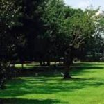 A San Giovanni Valdarno riaprono parchi e le aree verdi, ma restano chiuse le aree attrezzate per una migliore valutazione
