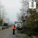 Pista ciclopedonale dell'Arno, iniziati i lavori di abbattimento di alberi lungo la Sr. 69. Fino al 4 dicembre sarà istituito il senso unico alternato